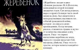 Образ и характеристика илюши из рассказа бежин луг тургенева сочинение