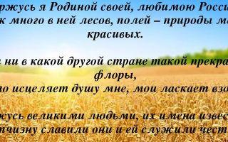 Сочинение на тему я горжусь своей родиной россией 4, 8 класс