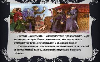 Сатира и юмор в рассказе чехова хамелеон 7 класс сочинение