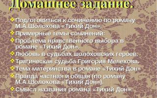 Основные проблемы романа тихий дон шолохова сочинение