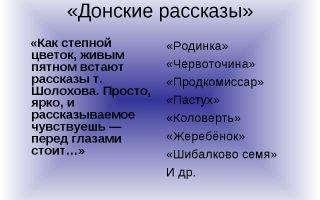 Анализ произведения шолохова червоточина