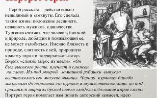 Характеристика и образ бирюка — главного героя рассказа тургенева бирюк