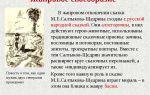 Жанровое своеобразие сказок салтыкова-щедрина