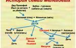 Семья мелеховых характеристика в романе тихий дон шолохова 11 класс сочинение