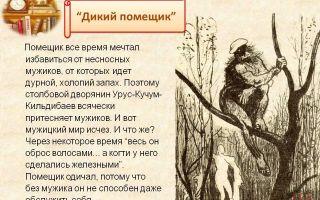 Характеристика и образ помещика в сказке дикий помещик салтыкова-щедрина сочинение