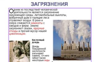 Сочинение на тему загрязнение окружающей среды