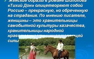 Сочинение федор подтелков в романе тихий дон шолохова