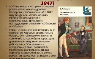 Герои романа обыкновенная история гончарова