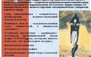 Народ и власть в истории одного города салтыкова-щедрина