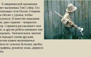 Анализ романа марка твена приключения тома сойера