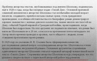 Анализ романа тихий дон шолохова сочинение