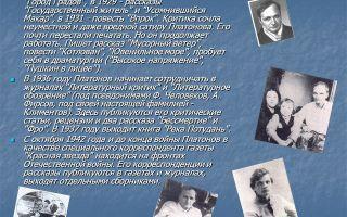 Анализ произведения платонова фро