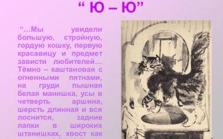 Сочинение анализ рассказа ю-ю куприна