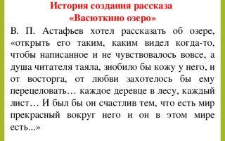 Сочинение по рассказу васюткино озеро астафьева