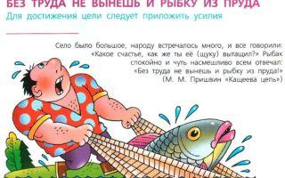 Сочинение по пословице без труда не выловишь и рыбку из пруда 4, 5, 6, 7 класс