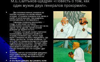 Сочинение мужик в повести о том, как один мужик двух генералов прокормил (образ и характеристика)
