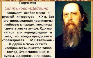 Критика о творчестве салтыкова-щедрина и отзывы современников