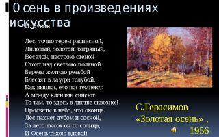 Сочинение в осеннем лесу все было желтое и багряное