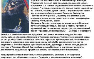 Образ и характеристика кота бегемота в романе мастер и маргарита булгакова сочинение