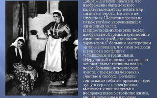 Сочинение картины жизни донских казаков в романе тихий дон шолохова